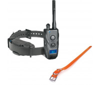 "Dogtra 1900S Black Edition Remote Trainer Bundle With Dogtra 1"" X 30"" Collar Strap - Orange"