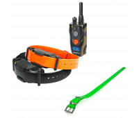 "Dogtra 1902S Two-Dog Remote Trainer Bundle With Dogtra 1"" X 30"" Collar Strap - Green"