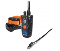 "Dogtra 282C Two-Dog Remote Trainer Bundle With Dogtra 3/4"" x 28"" Collar Strap - Black"